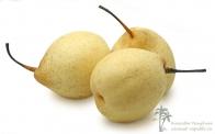 Китайская груша